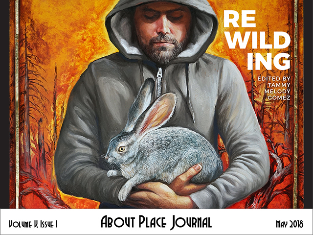 cover of Rewilding issue